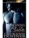 Burning Up Flint (Cyborg Seduction)