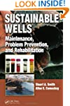 Sustainable Wells: Maintenance, Probl...
