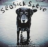 You Can't Teach An Old Dog New Tricks [VINYL] Seasick Steve
