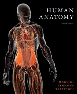 Frederic Martini, Human Anatomy 7th Edition PDF