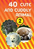 40 Cute Animals of the World Picture Book for Kids Vol 2 ( Cool Story and Facts inside )