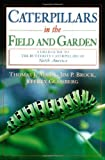 img - for Caterpillars in the Field and Garden: A Field Guide to the Butterfly Caterpillars of North America (Butterflies [or Other] Through Binoculars) book / textbook / text book
