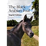 The Black Arabian Foalby Ingrid Fabian
