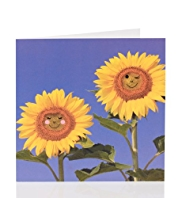 Smiley Sunflowers Blank Card