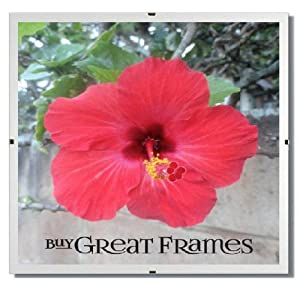 SET of 6 - GREATCLIP - 12x12 Square Glass and Clip Frames
