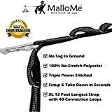 XL Hammock Straps - Hammock Tree Straps Set Versatile 2000+ LBS Heavy Duty 40 Loops & 100% No Stretch Suspension System Kit - Camping Hammock Accessories As Eno Hammock Straps Atlas | 2 Carabiners