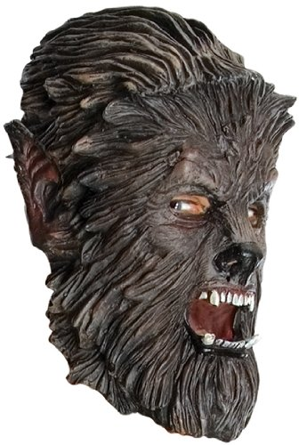 The Wolfman Costume 3/4 Child Costume Mask