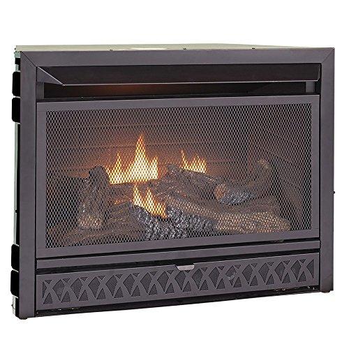 Procom Vent-Free Dual Fuel Fireplace Insert, Model FBNSD28T (Procom Gas Vent Free compare prices)