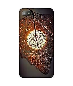 Leaf And Sun BlackBerry Z10 Case