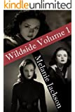 Wildside Bundle 1 (Books 2-4) (Wildside Series Book 101)