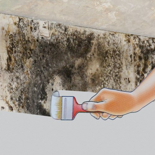 molto-alabastine-feuchtblocker-schimmel-grundierung-schimmelblocker-nikotinfarbe-fleckenabdeckfarbe-