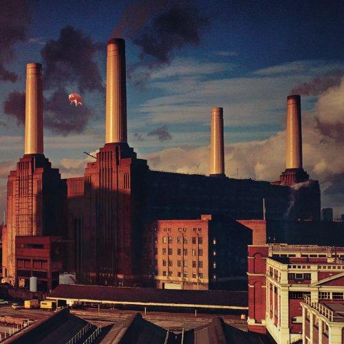 Pink Floyd - Animals (2011 Remaster) - Zortam Music