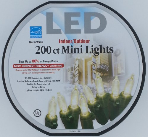 200 Ct. Mini-Style Led White Lights