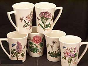 Portmeirion Botanic Garden Mandarin Mugs Set Of 6 Kitchen Home
