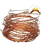 Starry String lights Simmper 33ft 100LED Copper Wire Firefly lights Multi-Color with Remote Control for Indoor Outdoor Garden Decoration Christmas Wedding Party