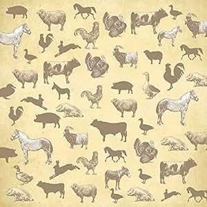 Animal farm essay papers