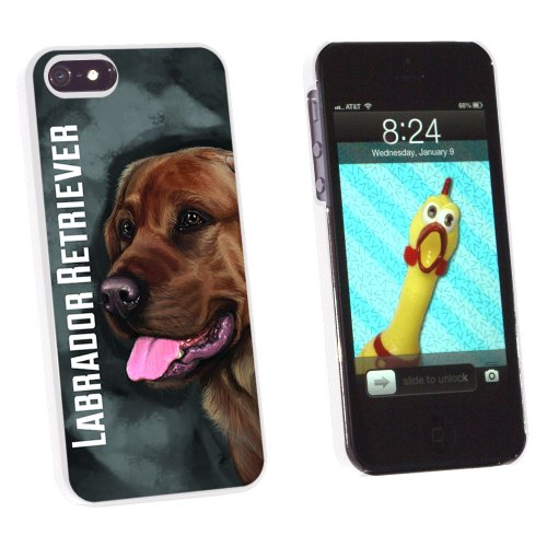 Chocolate Labrador Retriever Gray Grey - Dog Pet - Snap On Hard Protective Case for Apple iPhone 5 5S - White