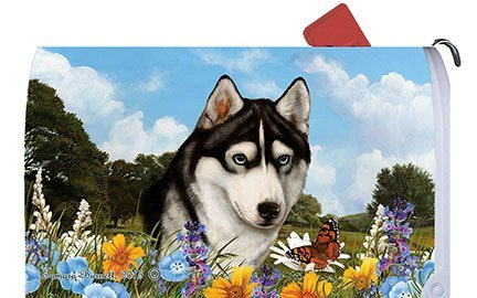 siberian-husky-black-white-best-of-breed-dog-breed-mail-box-cover-by-best-of-breed