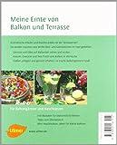 Image de Der Naschbalkon: Gesund, lecker, dekorativ