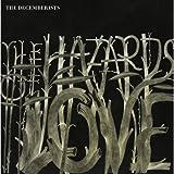Hazards of Love by Decemberists (2013-05-04)