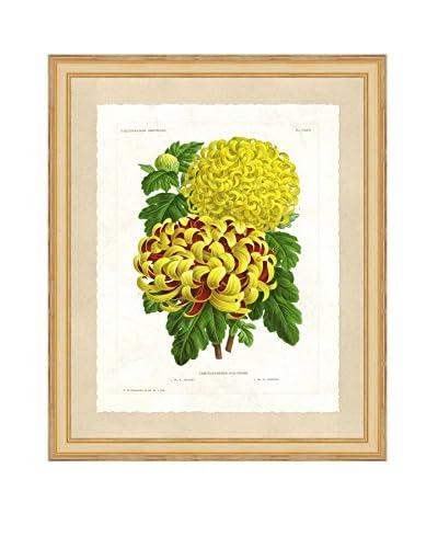 Art Source Botanical Floral Print I, Multi