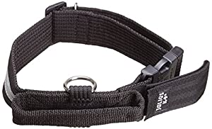 Julius K9 Collar with closable handle and safety lock, reflective strip - 50 mm wide, nylon, adjustable to fit neck 48-68 cm