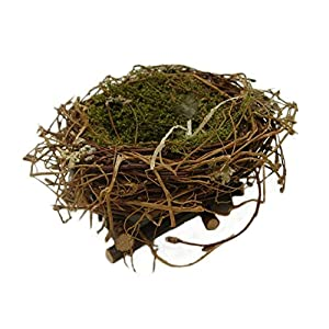 Amazoncom Wrens Nest Sm Sold In Case Pack Of 5 Home