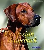 Rhodesian Ridegeback: Der Löwenhund Afrikas