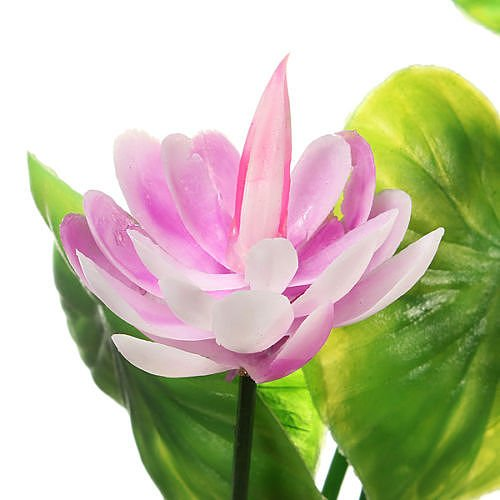New Artificial Plastic Lotus Flower Grass Plant Aquatic for Fish Tank Ornament D?cor no.027 (Lotus Water Treatment System compare prices)