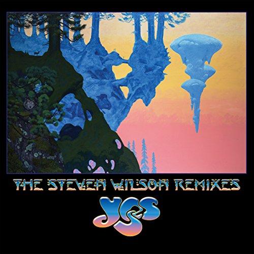 Vinyl : The Steven Wilson Remixes (6LP) [+Peso($28.00 c/100gr)] (US.AZ.108.29-0-B07CPJYQQ5.387)