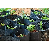 Unique Plastic PolyBags_10x15cm_5000 Black Poly Grow Bag (5000 Qty)
