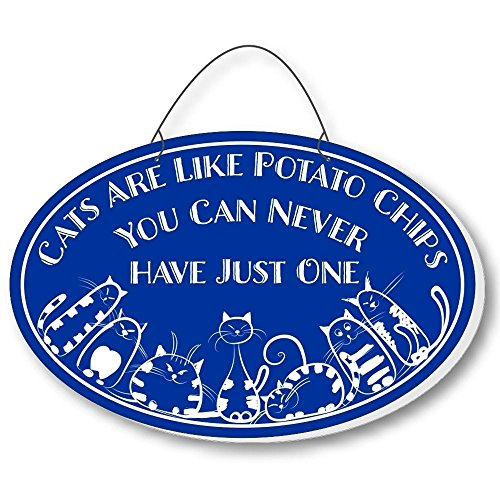 Cool Cats Cat-Gang Oval Laser-Etched 3-In-1 Plaques Like Potato Chips Blue front-605279