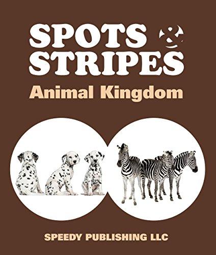 spots-stripes-animal-kingdom