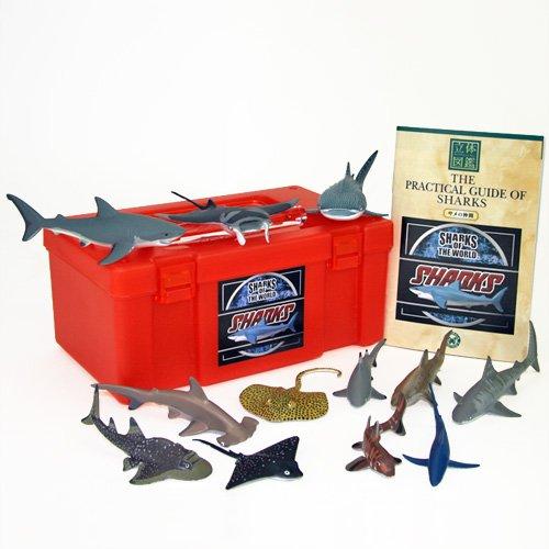 立体図鑑リアルフィギュアボックス シャーク(サメの仲間)