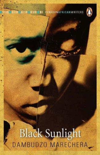Black Sunlight (Penguin Classics), by Dambudzo Marechera