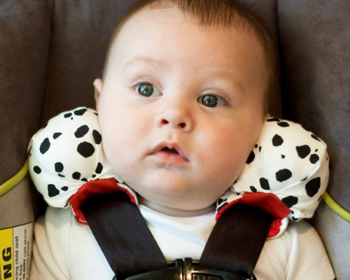 Cheapest Baby Car Seats - Keep Your Kids Safe In Cars.: SnugZee Baby