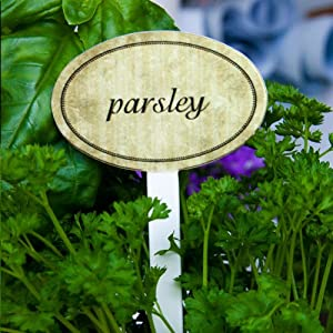 garden herb marker signs labels set of 15 pcs