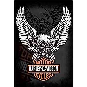 Empire 327819 Poster Harley Davidson Eagle, 91,5x61 cm   Valutazione del cliente