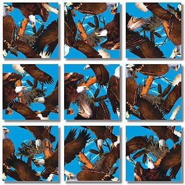 Cheap Fun B Dazzle Bald Eagles Scramble Squares 9 Piece Puzzle (B000BX5BSC)