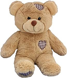 Long Message Recordable 15 Inch Talking Teddy Bear With 1 Minute Of Recording Time by The Bear Factory