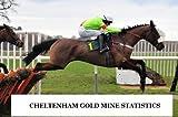 CHELTENHAM FESTIVAL GOLD MINE STATISTICS