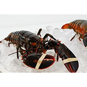 Live New England Lobster 3-4 lb avg , 10 lb case, approximately 2-3 Lobsters