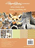 Pollyanna Pickering British Wildlife Card Making Kit, Watching