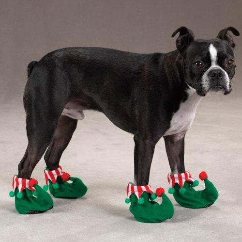 how to make dog shoes