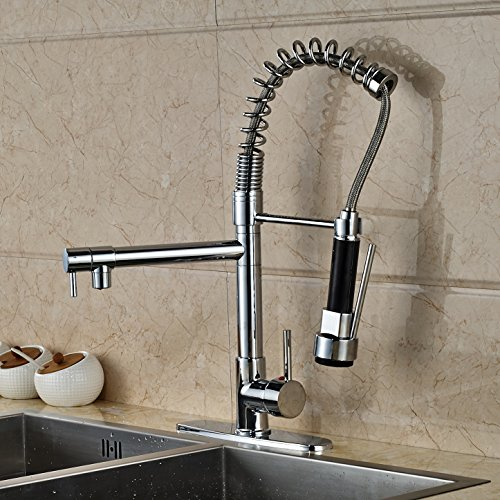 Rozin Led Light Spray Swivel Spout Kitchen Sink Faucet