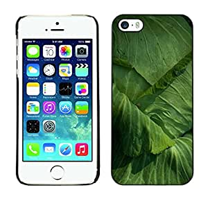 Omega Covers - Snap on Hard Back Case Cover Shell FOR Apple iPhone 5 / 5S - Cabbage Gardening Yard Eco Vegetable