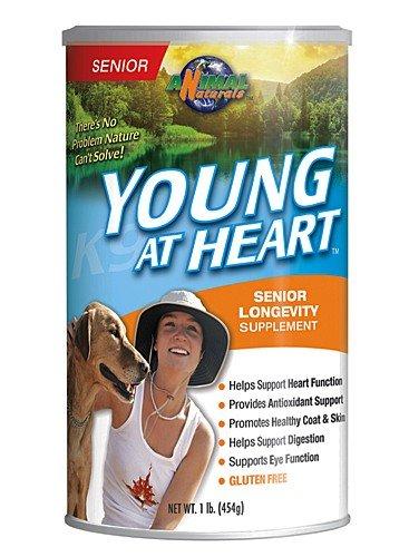 Longevity Dog Supplement