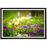 EzyPRNT Beautiful Nature Orange Purple Flowers Framed Poster (Size: 19x13 Inch)