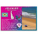 DELAWARE STATE FACTS postcard set of 20 identical postcards. Post cards with DE facts and state symbols. Made in USA.