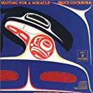 Waiting for a Miracle (Singles 1970-1987)